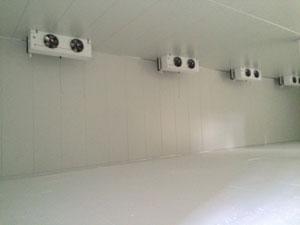 Freezers Service Product